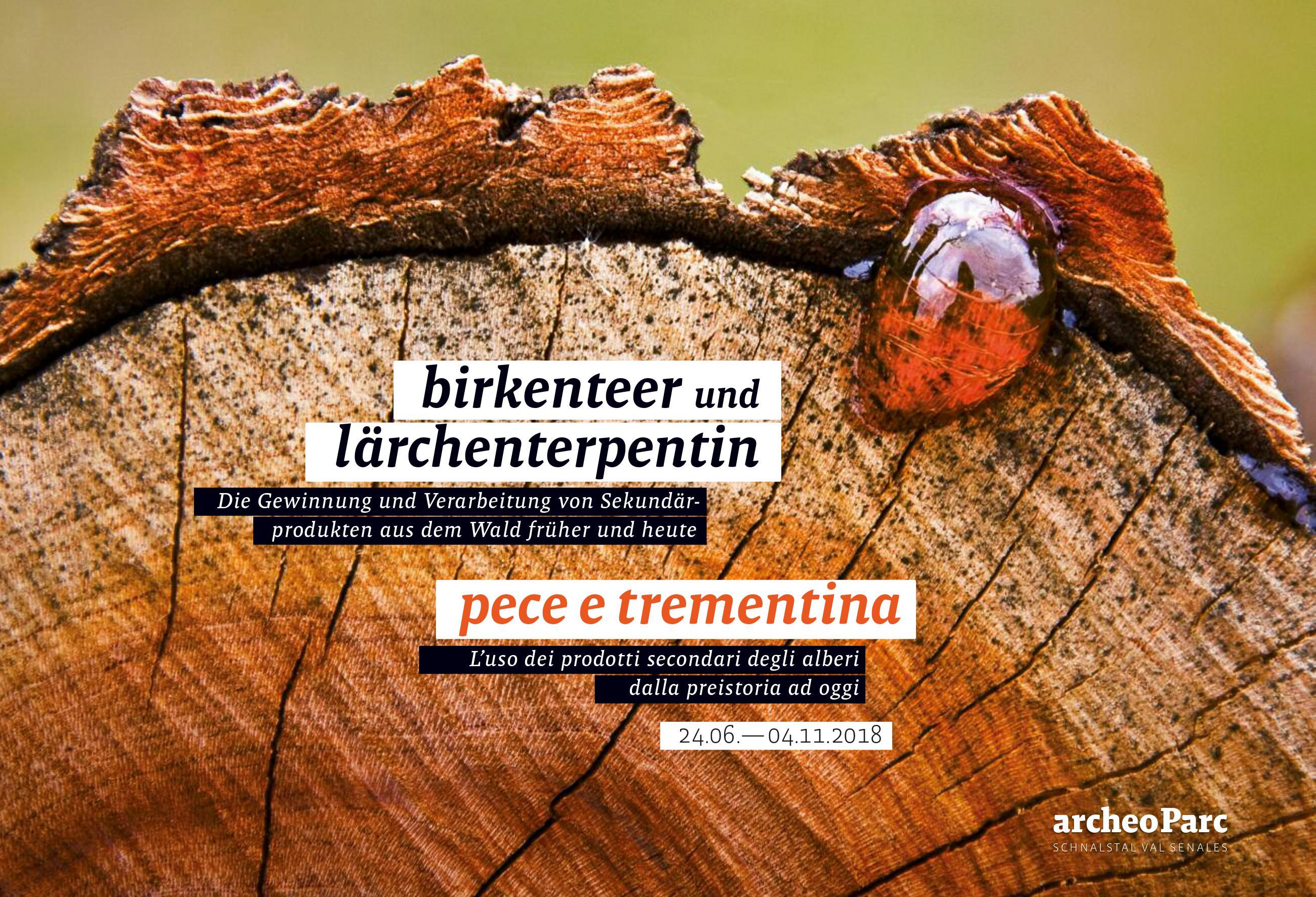 "Einladung zur Sonderausstellung 2018 im archeoParc Schnalstal ""Birkenteer und Lärchenterpentin""<br/>Invito per l'inaugurazione della mostra temporanea 2018 ""Pece e trementina"" all'archeoParc Val Senales"