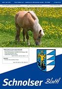 schnolserblattl29